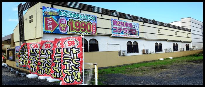 シルフ 白兎海岸店